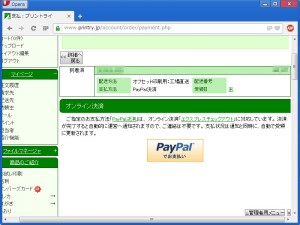payment-online-paypal02